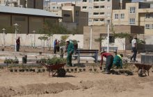 سرانه ۲۱ متری فضای سبز در پردیسان / لزوم اجرای برنامههای فرهنگی
